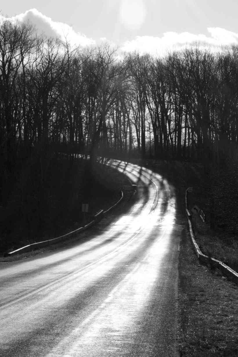 413_25_Hog_Hollow_Road