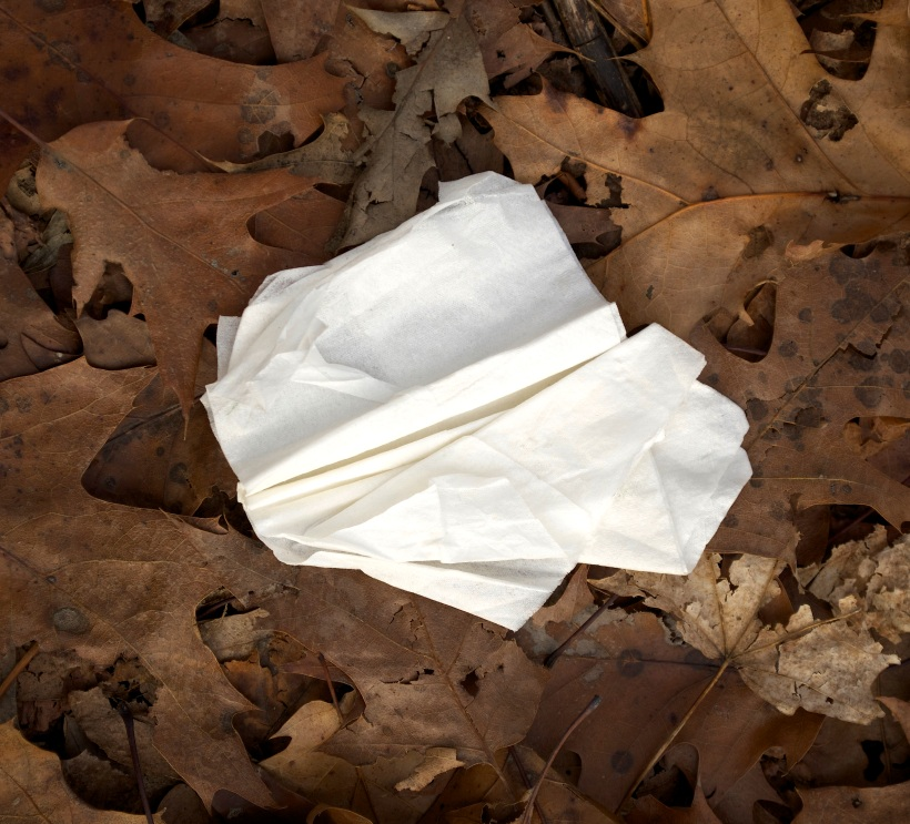 Leaves and Tissue